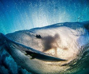 boy, life, and surf image
