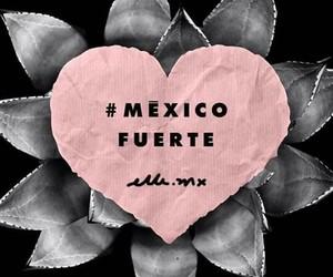fuerza, mexican, and terremoto image