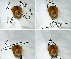 cat, funny, and drawing image