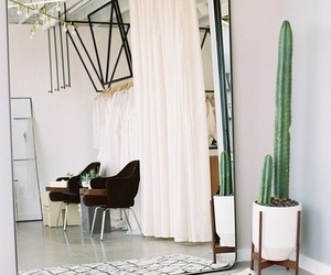 mirror, bedroom, and cactus image