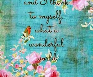 quotes, wonderful, and world image
