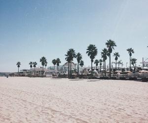 beach, palmtrees, and sand image