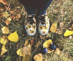 autumn, sunflower, and vans image