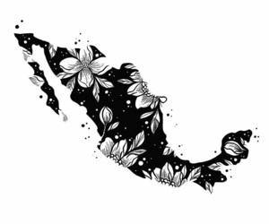 draw, tattoo, and méxico image