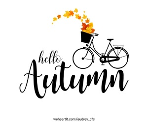 autumn, bike, and day image