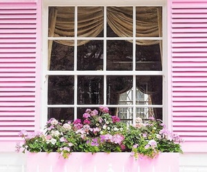 cottage, pink, and shabby chic image