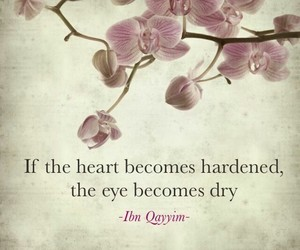 islam, heart, and quotes image