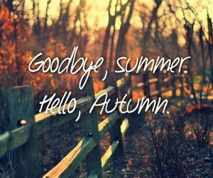 autumn, fall, and summer image