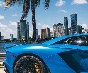 blue, city, and Lamborghini image