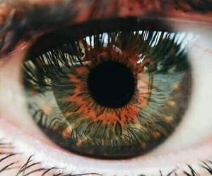 eyes, beautiful, and amazing image