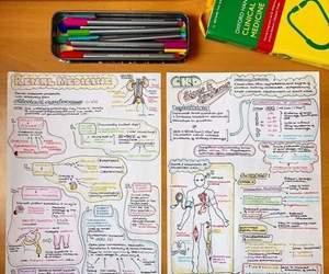 medicine, college, and school image