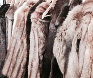 fashion, fur, and coat image