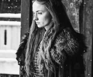 sansa stark, game of thrones, and sophie turner image