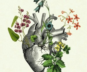 heart, flowers, and body parts image
