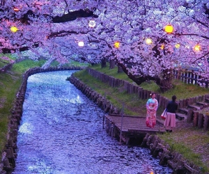 japan, travel, and nature image