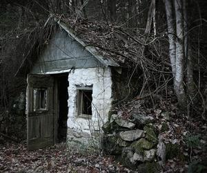 house, creepy, and forest image