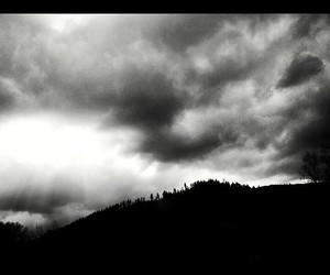 black&white, mood, and rain image