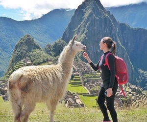 machu picchu, mountain, and travel image