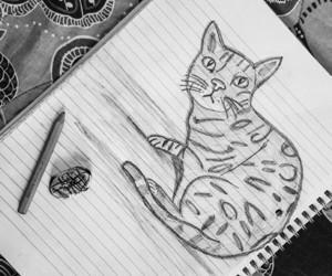 animal print, draw, and pet image