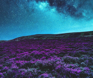 landscape, stars, and nature image
