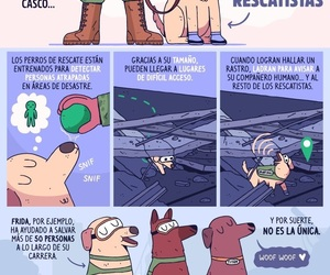 heroes, perros, and pictoline image