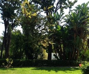 jardin, nature, and bardo image