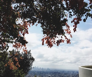 autumn, fall, and hollywood image