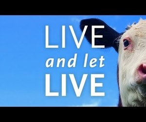 documentary, vegan, and live and let live image