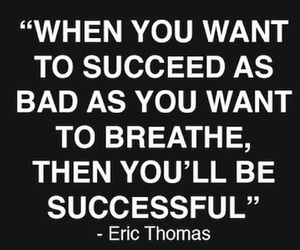 quote, success, and succeed image