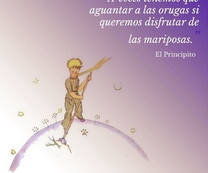 frase, mariposas, and el principito image