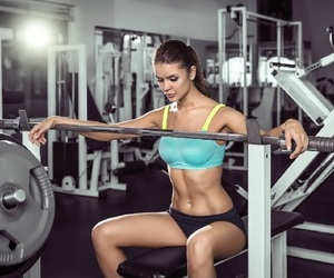 fitness equipment and gym & fitness equipment image
