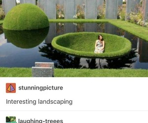 backyard, cool, and funny image