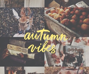 autumn, fall, and friday image