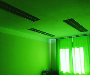 Chelsea and green image