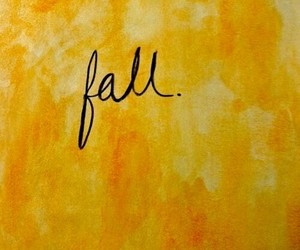 fall, autumn, and yellow image