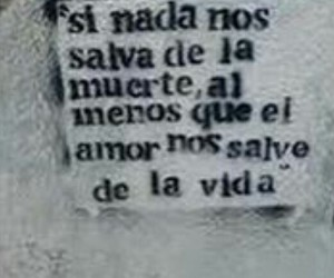 amor, calle, and frases image