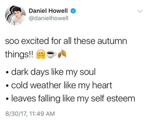 autumn, fall, and humor image