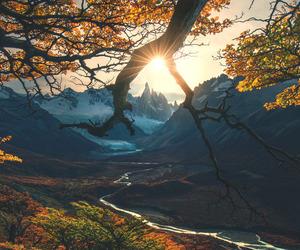 autumn, nature, and landscape image
