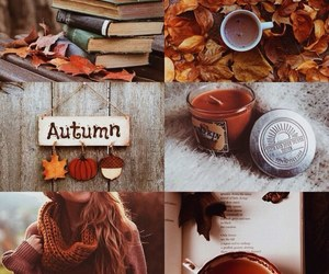 autumn, book, and nature image
