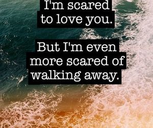 quotes, love, and scared image