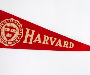 banner, harvard, and ivy league image