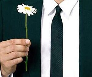 pushing daisies and love image