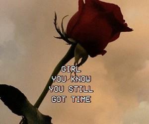 rose, still, and zayn image