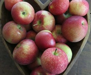 apples, autumn, and heart image