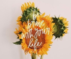 quotes, sunflower, and text image