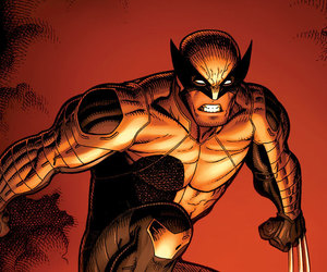 logan, Marvel, and wolverine image
