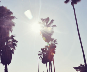 summer, sun, and california image