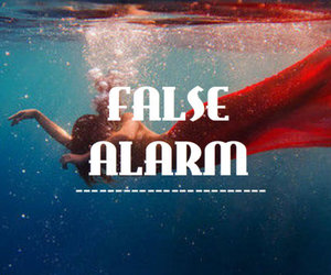 abel, false alarm, and Lyrics image