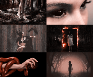 forest, gothic, and witchcraft image