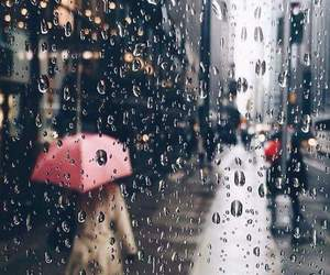 rain, fall, and umbrella image